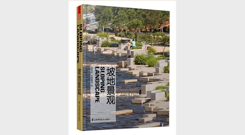 PUBLICACION CHINA 1